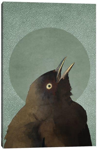 Blackbird Canvas Art Print