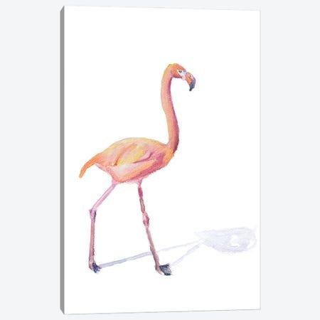 Flamingo Shadow Canvas Print #RMU222} by Roberta Murray Canvas Art Print
