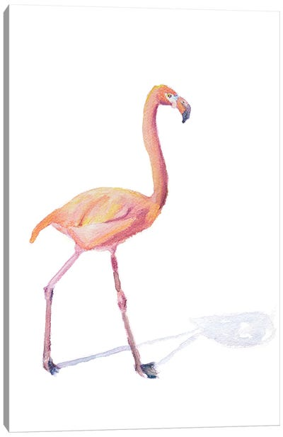 Flamingo Shadow Canvas Art Print