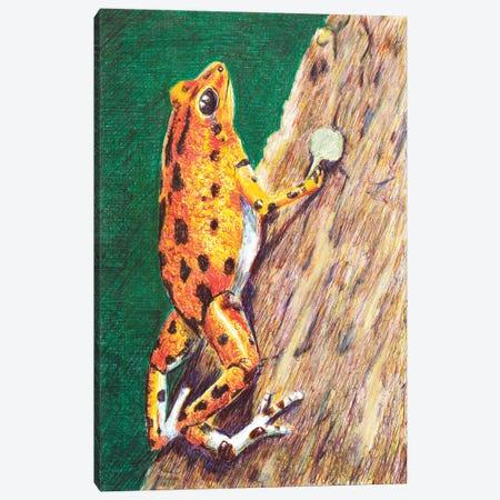 Poison Dart Frog Canvas Print #RMU223} by Roberta Murray Art Print