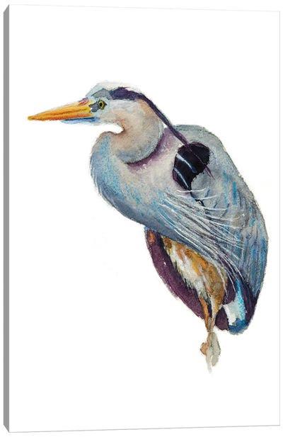 Heron Poser Canvas Art Print