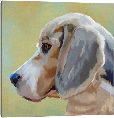 The Beagle Canvas Art Print