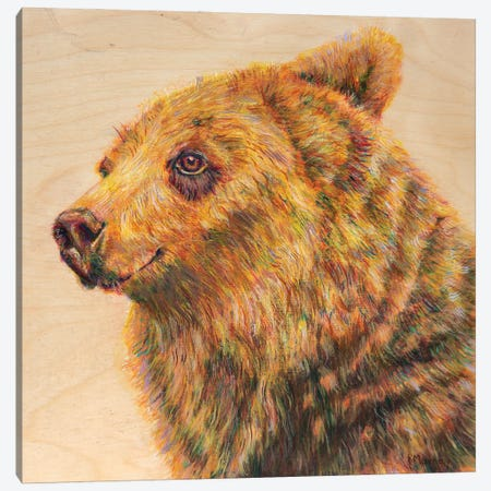 Berkley The Bodacious Canvas Print #RMU27} by Roberta Murray Canvas Wall Art