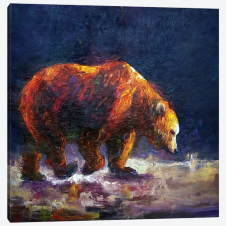 Bauerman Bear Canvas Print #RMU28} by Roberta Murray Canvas Art Print