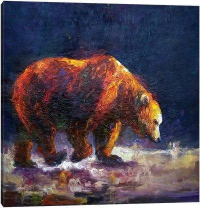 Bauerman Bear Canvas Art Print