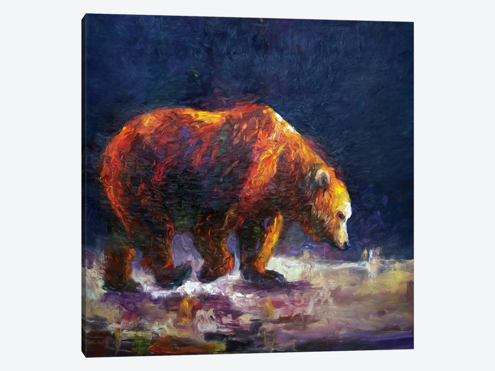 Bauerman Bear by Roberta Murray 1-piece Canvas Print