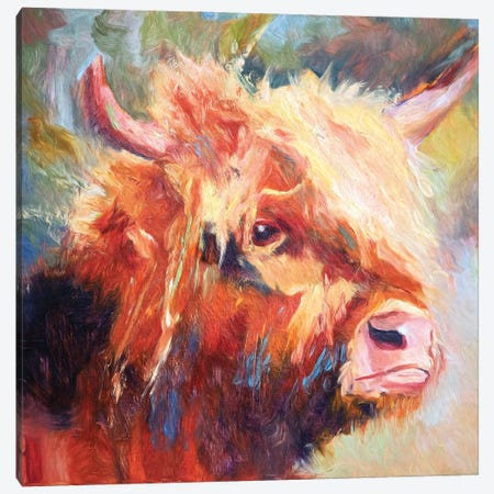 The Comb Over Canvas Print #RMU38} by Roberta Murray Canvas Art