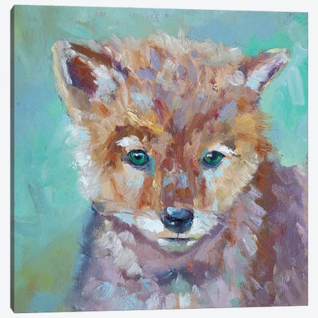 Cutest Coyote Canvas Print #RMU44} by Roberta Murray Canvas Wall Art