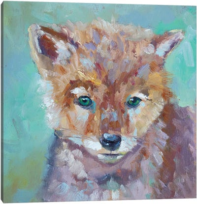 Cutest Coyote Canvas Art Print