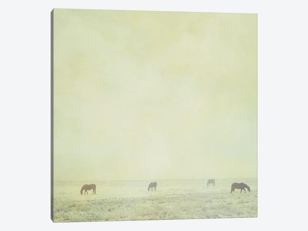 Colder Horses by Roberta Murray 1-piece Canvas Artwork