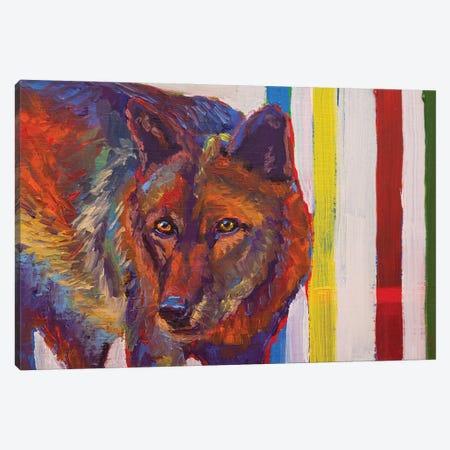 Canadian Stare Down Canvas Print #RMU51} by Roberta Murray Canvas Wall Art