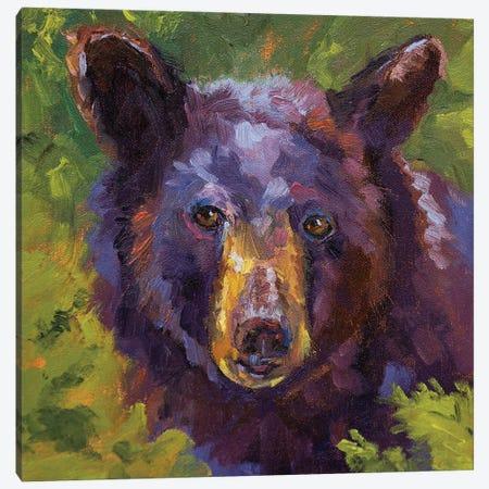Lowbush Surprise Canvas Print #RMU55} by Roberta Murray Canvas Print