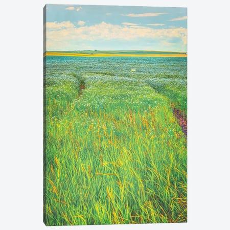 Sea Of Blue Canvas Print #RMU64} by Roberta Murray Canvas Artwork