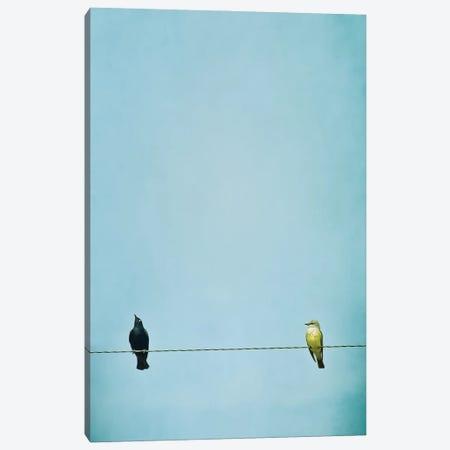 Stuck Up Canvas Print #RMU67} by Roberta Murray Canvas Wall Art