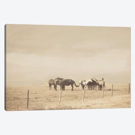 The Herd Canvas Print #RMU74} by Roberta Murray Art Print