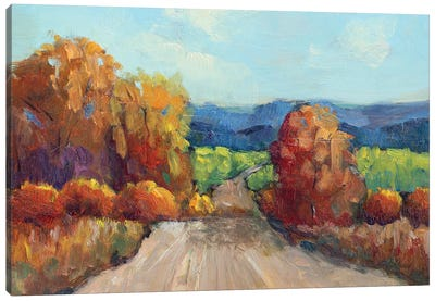 County Road Canvas Art Print