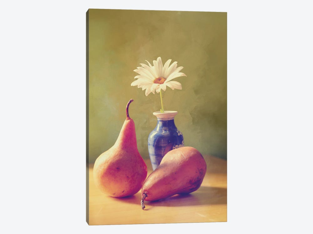 Daisy And Pears by Roberta Murray 1-piece Art Print