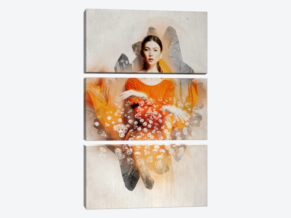 Ruby Bliss by 5by5collective 3-piece Canvas Art Print