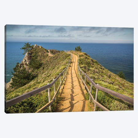 Path To Muir Beach 3-Piece Canvas #RMZ6} by Adam Romanowicz Canvas Artwork