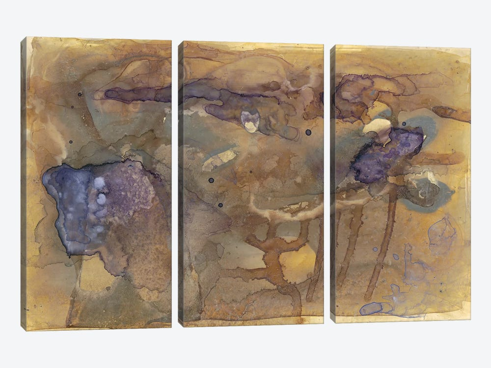 Violet Inclusion I by Renée Stramel 3-piece Canvas Artwork