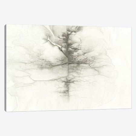 Infused Memory II Canvas Print #RNE122} by Renée Stramel Art Print