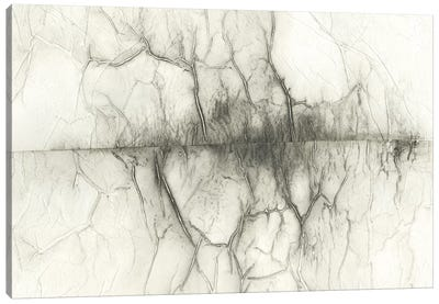 Infused Memory IV Canvas Art Print