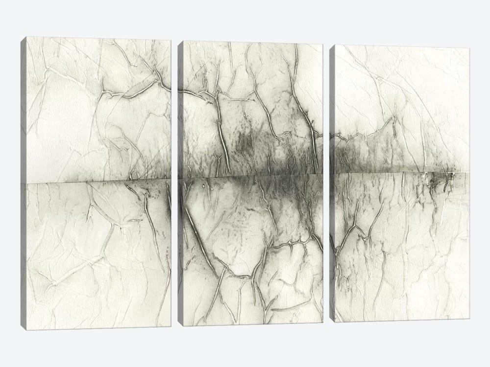 Infused Memory IV by Renée Stramel 3-piece Canvas Print