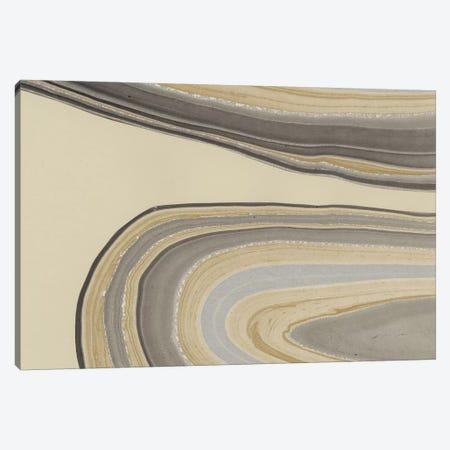 Cross Sections I 3-Piece Canvas #RNE156} by Renée Stramel Canvas Print
