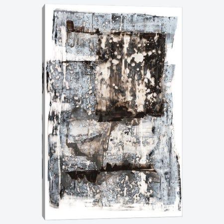 Speckled Remnants II Canvas Print #RNE200} by Renée Stramel Canvas Wall Art