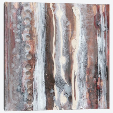 Surface Study I Canvas Print #RNE57} by Renée Stramel Canvas Print