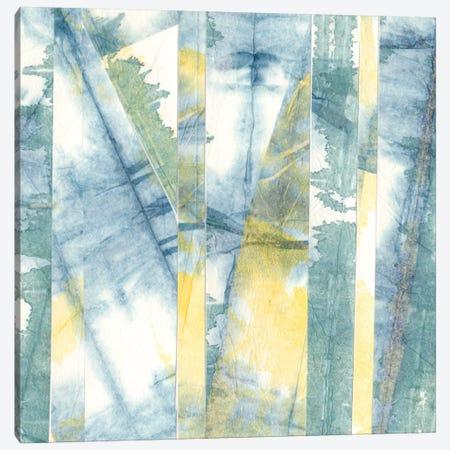 Down East II Canvas Print #RNE8} by Renée Stramel Canvas Artwork