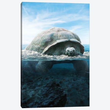 Mega Turtle Canvas Print #RNG22} by Ruvim Noga Canvas Print