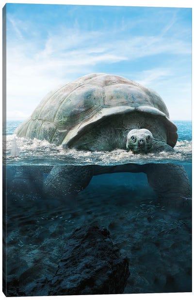 Mega Turtle Canvas Art Print