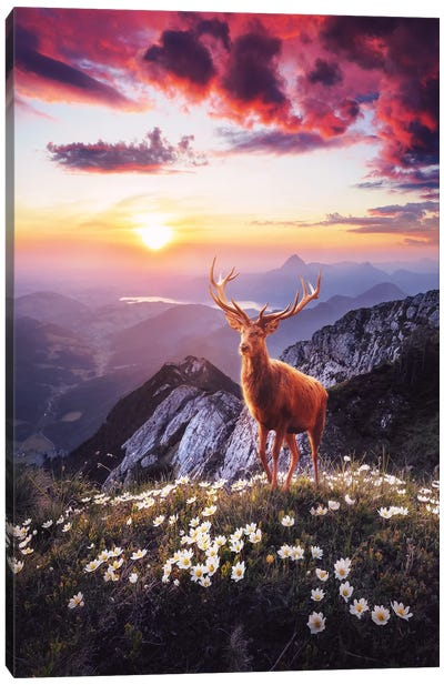Sunset In The Mountains Canvas Art Print