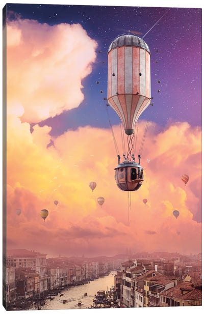 Afternoon Flight Canvas Art Print