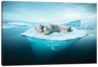 Sleeping Polar Bear Canvas Art Print