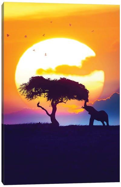 Sunset On The Savannah Canvas Art Print