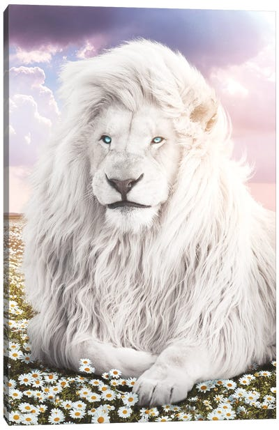 White Lion In Field Of Flowers Canvas Art Print