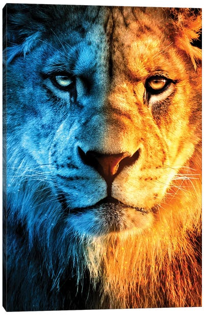 King Of Fire And Ice Canvas Art Print