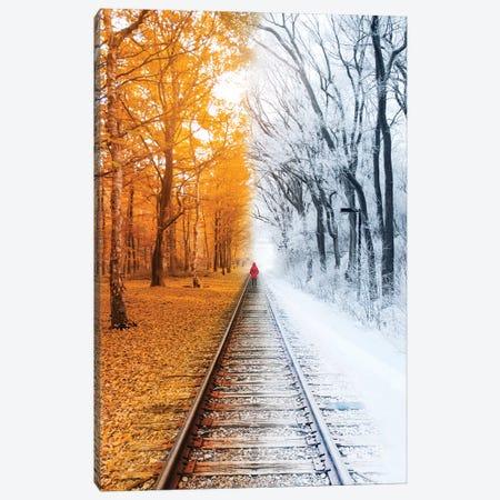 Winterfall Canvas Print #RNG42} by Ruvim Noga Canvas Art Print