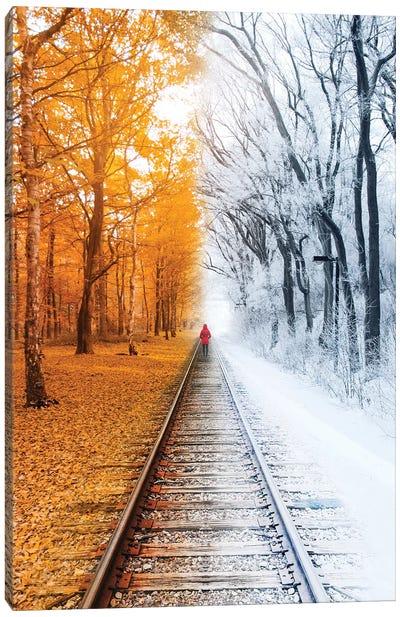Winterfall Canvas Art Print