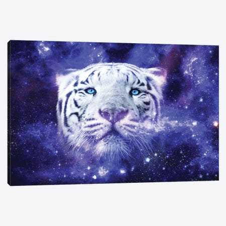White Tiger Nebula Canvas Print #RNG43} by Ruvim Noga Art Print