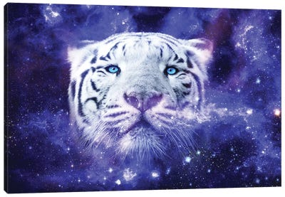 White Tiger Nebula Canvas Art Print