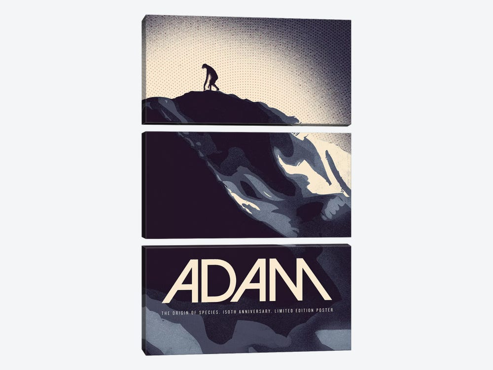 Adam - Darwin Print by Reign & Hail 3-piece Canvas Print