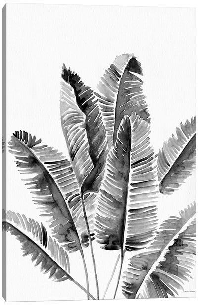 Organic Botanical III Canvas Art Print