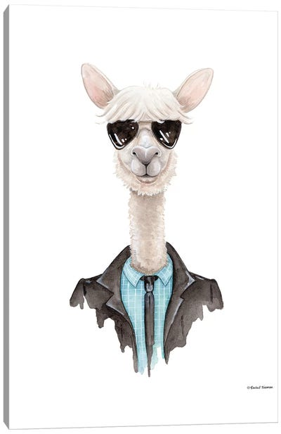 Alpaca In Aviators Canvas Art Print