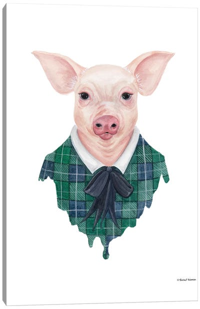 Pig In Plaid Canvas Art Print