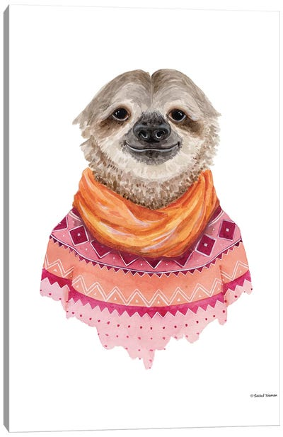 Sloth In A Sweater Canvas Art Print