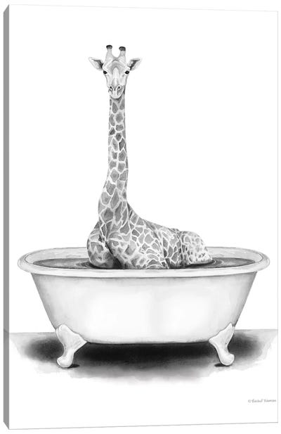 Giraffe in Tub Canvas Art Print