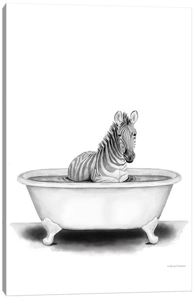 Zebra in Tub Canvas Art Print